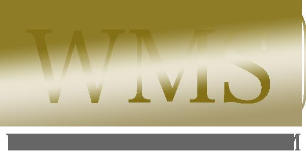 WMS Webinar Master System